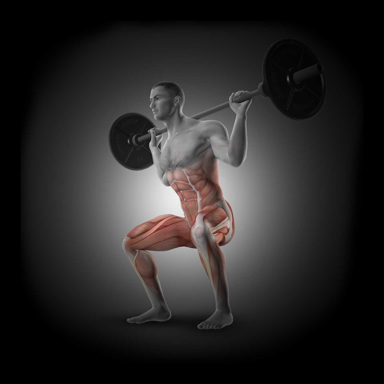 clinica de levantamento de peso olímpico